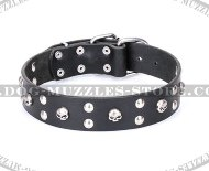 "Fabulous Skull Dog Collar ""Orphic Skulls"" from FDT Artisan"