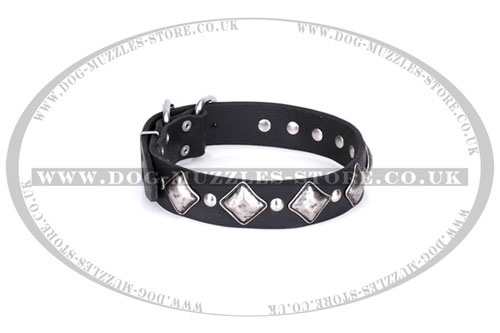 buy soft leather dog collar FDT Artisan