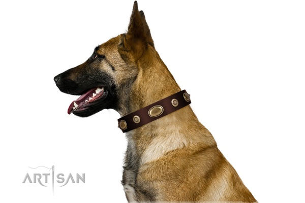 Artisan dog collars for Belgian Malinois