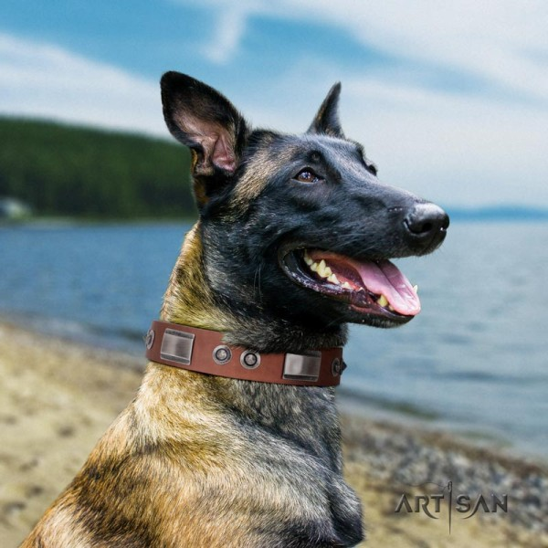 Atisan tan leather dog collar for Belgian Malinois