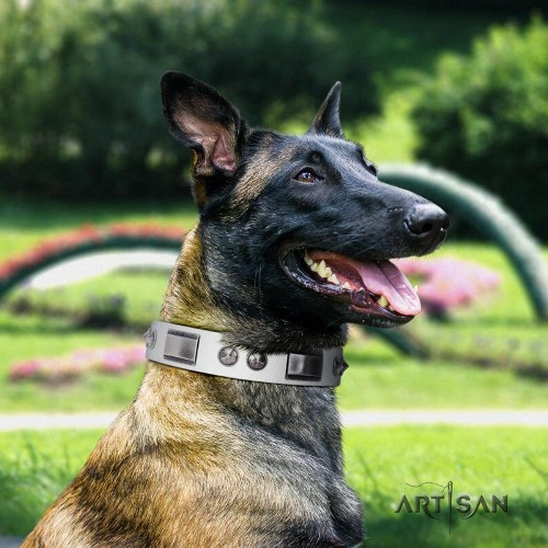 Artisan white studded dog collar for Belgian Malinois