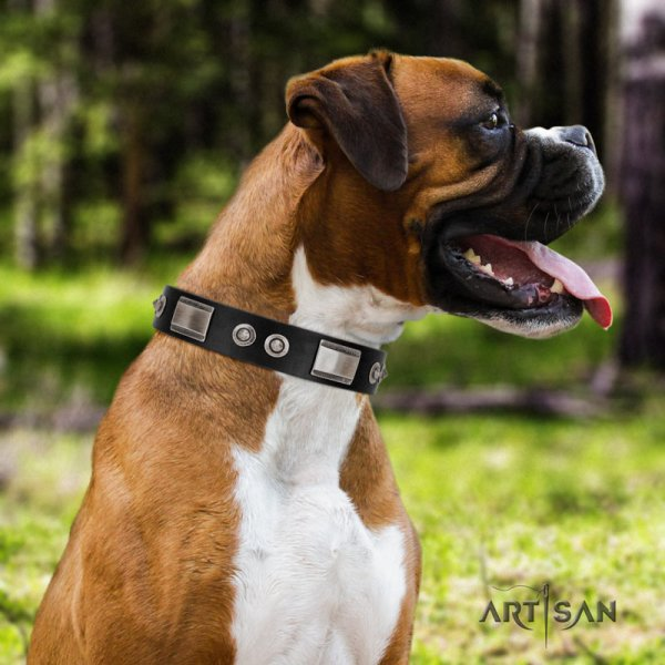 Artisan leather studded dog collar for Boxer