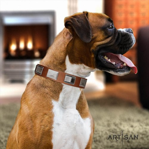 tan leather dog collar for Boxer