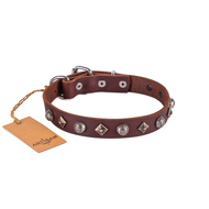 Exclusive Brown Leather Dog Collar With Nameplate UK