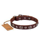 Designer Studded Dog Collar With Round Ornaments FDT Artisan