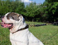 Bulldog Leash for Control Over your Dog on Short Distance