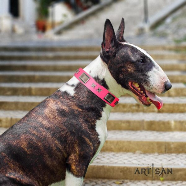 Artisan Girly big dog collar for Bullterrier