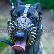 Spiked Dog Muzzle with Soft Nappa Lining for Belgian Malinois