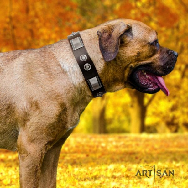 Artisan chocolate brown dog collar for Cane Corso