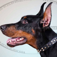 Doberman Collar with Pyramid Studs