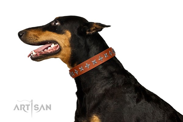 tan studded dog collar for Doberman from Artisan