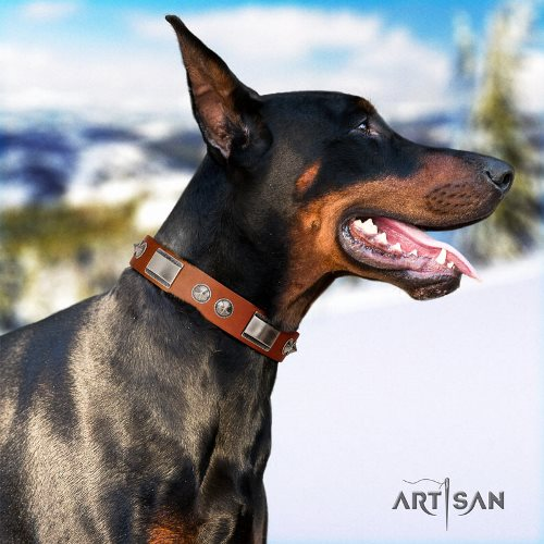 tan leather dog collar for Doberman