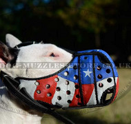 "Dog Muzzle for Bull Terrier with Handpainting ""American Pride"""