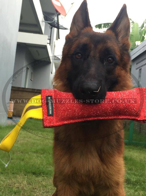 best dog tug with handle