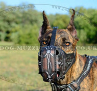 "Great Dane Muzzle Super Strong Design ""Barbed Wire"""