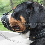 Loop-Like Soft Dog Muzzle to Stop Barking for Sennenhund