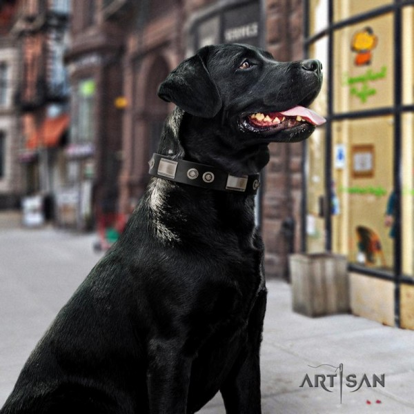 Artisan large wide leather dog collar for Labrador