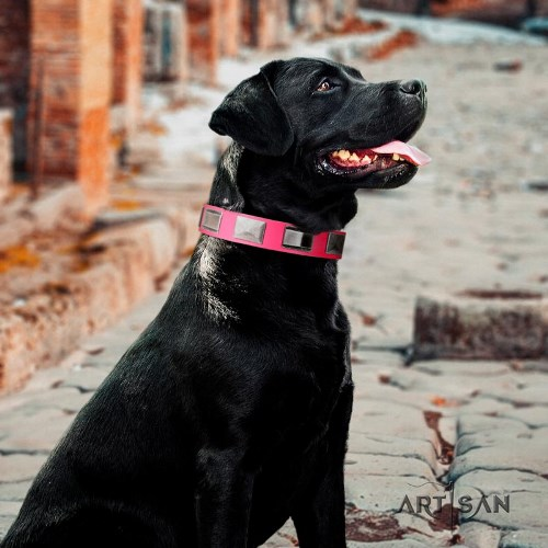 buy pink leather dog collar Artisan for Labrador