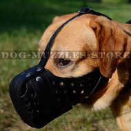 Labrador Retriever Dog Leather Muzzle for Work, Police&Military