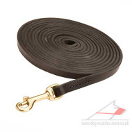 Long Dog Lead for Tracking (10 mm wide)