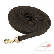 Long Dog Training Lead (19 mm wide)