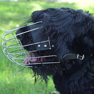 Basket Muzzle for Dogs Like Black Russian Terrier UK Bestseller
