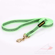 Extra Durable Nylon Training Lead For Dogs 0.8 In Width