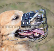 Basket Muzzle for Dog Padded | Golden Retriever Muzzle UK
