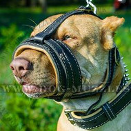 Soft No Bark Dog Muzzle for Pit Bull Terrier