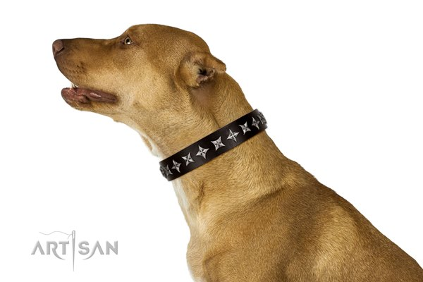 Pitbull dog collar from FDT Artisan