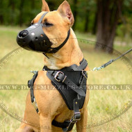 Pitbull Training Dog Muzzle of Strong Leather Design