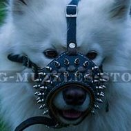 Loop Shaped Dog Leather Muzzle with Spikes for Samoyed
