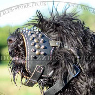 Leather Dog Muzzle with Nappa Lining and Spikes| Soft Dog Muzzle