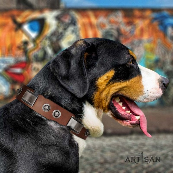 Artisan handmade leather dog collar for Swiss Mountain Dog