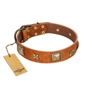 """Celtic Tunes"" Natural Leather Dog Collar With Studs FDT Artisan"