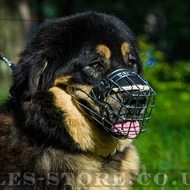 Dog Basket Muzzle for Tibetian Mastiff Size