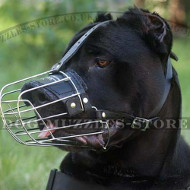 Wire Basket Dog Muzzle for Cane Corsos