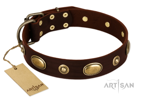 wide brown leather dog collar by Artisan