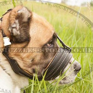 Bark Stopper Dog Muzzle Loop for Big Dogs Like Alabai