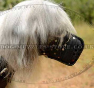 Basket Muzzle for Large Dogs | South Russian Shepherd Dog Muzzle
