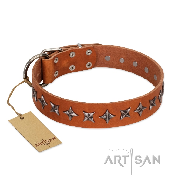 Artisan leather dog collar with stars