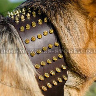 Extra Stylish Warrior Dog Collar with Spikes for German Shepherd