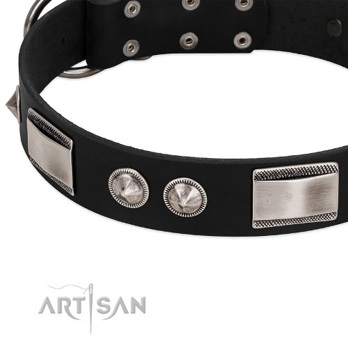 black leather dog collar with studs FDT Artisan