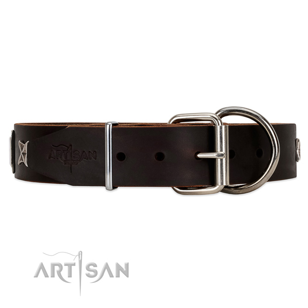 Artisan brown leather dog collar in the UK