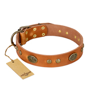 Best Quality Leather Dog Collar FDT Artisan Baroque Style