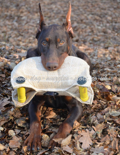 Puppy Training Pad for Schutzhund