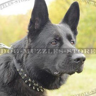 Designer German Shepherd Collar with Spikes and Studs