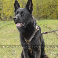 Luxury Handmade Leather Dog Harness with Brass Fitting for GSD