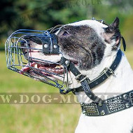 Pitbull Muzzle - Padded Wire Basket Muzzle for Pitbull