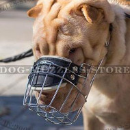 Super Ventilated Shar Pei Muzzle that Allows Drinking